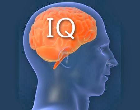 IQ Riddle