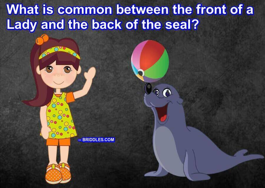 Lady Seal Common Riddle